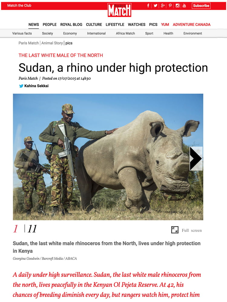 Sudan, A Rhino Under High Protection